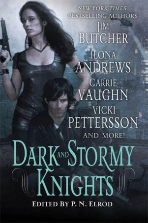 Скачать fb2 книгу: Dark and Stormy Knights
